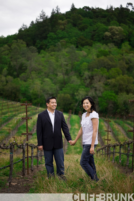 Napa engagement shoot cliff brunk